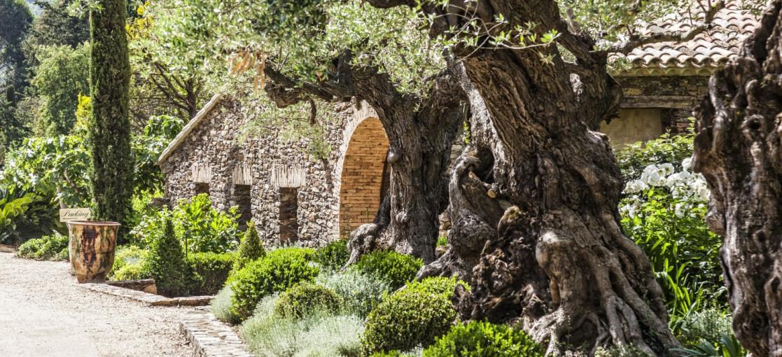 Chambres d'hôtes Saint-Tropez Domaine les Mésanges